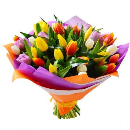 Доставка тюльпанов в Шымкенте